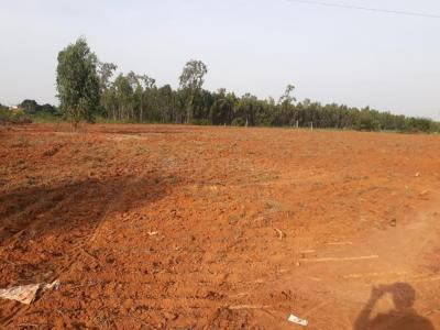Gallery Cover Image of  Sq.ft Residential Plot for buy in Yerthiganahalli for 2398800