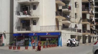 Gallery Cover Image of 1588 Sq.ft 3 BHK Apartment for rent in Shastri Nagar for 14000