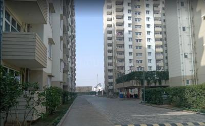 Gallery Cover Image of 700 Sq.ft 2 BHK Apartment for rent in Tulip Lemon, Sector 69 for 18000