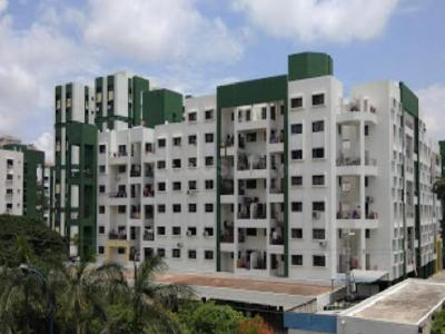 Gallery Cover Image of 900 Sq.ft 2 BHK Apartment for rent in Grevillea, Magarpatta City for 20000