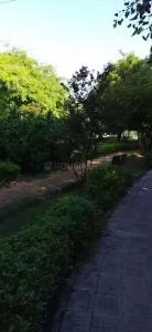 200 Sq.ft Residential Plot for Sale in Sector 52, Noida