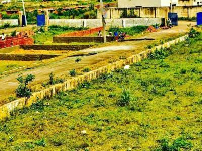 50 Sq.ft Residential Plot for Sale in Sadopur, Greater Noida