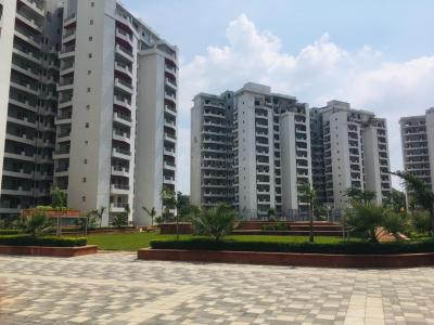 Gallery Cover Image of 2724 Sq.ft 4 BHK Apartment for buy in Sector 91 for 11500000