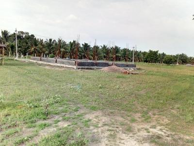 Gallery Cover Image of  Sq.ft Residential Plot for buy in Saravanampatty for 3100000