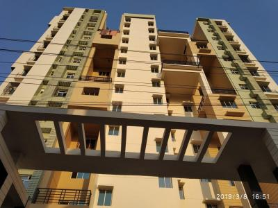 Gallery Cover Image of 1411 Sq.ft 3 BHK Apartment for rent in Nayabad for 20000