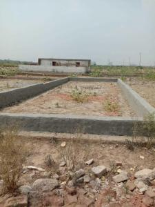 Gallery Cover Image of  Sq.ft Residential Plot for buy in Sector 150 for 262500