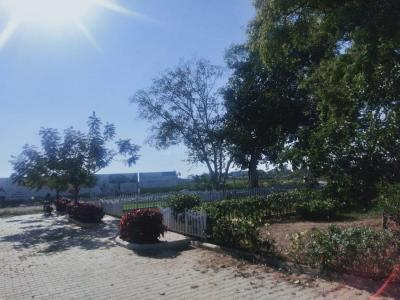 Gallery Cover Image of  Sq.ft Residential Plot for buy in Oragadam for 2700000