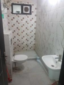 Common Bathroom Image of Tera PG in Patel Nagar