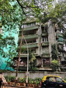 Gallery Cover Image of 3000 Sq.ft 3 BHK Apartment for buy in Agripada for 75000000