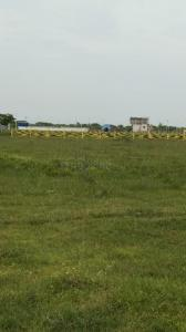 2400 Sq.ft Residential Plot for Sale in Chengalpattu, Chennai