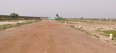 3600 Sq.ft Residential Plot for Sale in G.Buddha University, Greater Noida