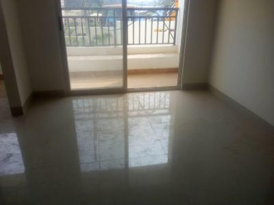 Gallery Cover Image of 1020 Sq.ft 2 BHK Apartment for rent in Whitefield for 22000