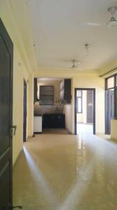 Gallery Cover Image of 1425 Sq.ft 2 BHK Apartment for rent in Amrapali Village Phase 2, Kala Patthar for 14000