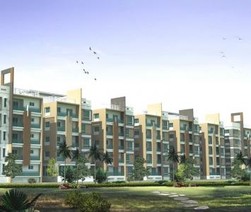 Gallery Cover Image of 990 Sq.ft 2 BHK Apartment for buy in Kalinga Nagar for 4070005