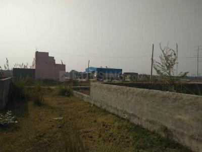 1350 Sq.ft Residential Plot for Sale in Sector 135, Noida