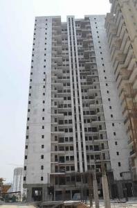 Gallery Cover Image of 915 Sq.ft 2 BHK Apartment for rent in Noida Extension for 6000
