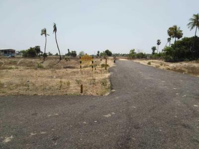 Gallery Cover Image of 800 Sq.ft Residential Plot for buy in Sirukalathur for 550000