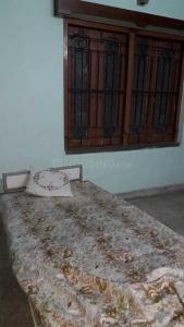Bedroom Image of PG 4194578 Ballygunge in Ballygunge