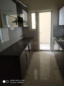 Gallery Cover Image of 1650 Sq.ft 3 BHK Apartment for rent in MKS La Royale, Kinauni Village for 18500