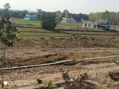 6804 Sq.ft Residential Plot for Sale in Ganga Nagar, Rishikesh