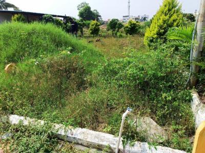 900 Sq.ft Residential Plot for Sale in Katad Khana, Pune
