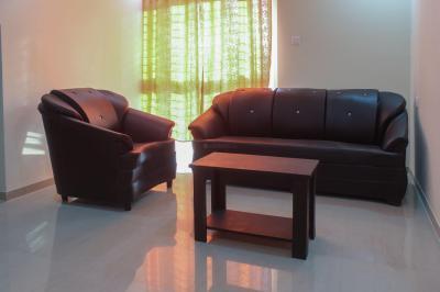 Living Room Image of PG 4642558 Wakad in Wakad