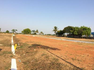 Gallery Cover Image of  Sq.ft Residential Plot for buy in Redhills for 280000
