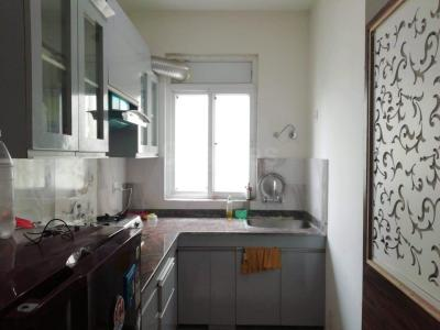 Gallery Cover Image of 450 Sq.ft 1 BHK Apartment for buy in Sector 84 for 3000000