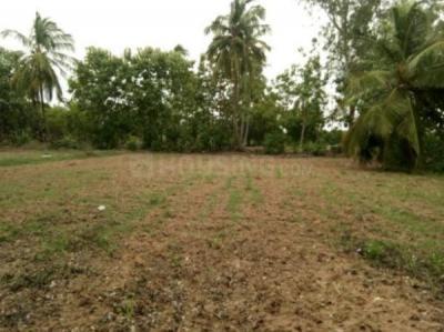 2869 Sq.ft Residential Plot for Sale in Kotivakkam, Chennai