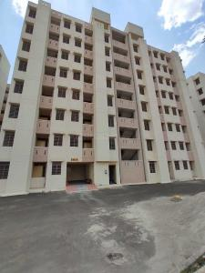Gallery Cover Image of 504 Sq.ft 1 BHK Apartment for buy in Muhana for 875000