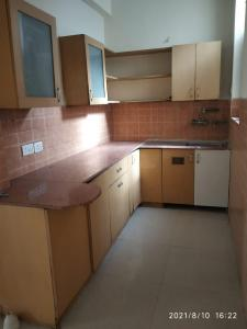 Gallery Cover Image of 1250 Sq.ft 2 BHK Independent Floor for rent in DLF Phase 3 for 22000