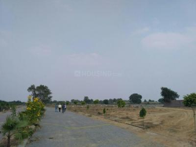 Gallery Cover Image of  Sq.ft Residential Plot for buy in Rai Purwa for 325000