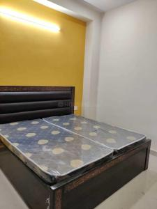Gallery Cover Image of 540 Sq.ft 1 BHK Apartment for rent in Sector 49 for 13000