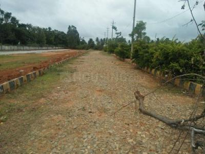 Gallery Cover Image of  Sq.ft Residential Plot for buy in Singasandra for 7800000