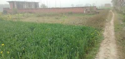 1250 Sq.ft Residential Plot for Sale in VDA Colony, Varanasi