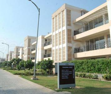 Gallery Cover Image of 300 Sq.ft 2 BHK Apartment for rent in Sector 81 for 14000
