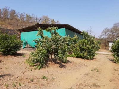 1200 Sq.ft Residential Plot for Sale in Vasai West, Vasai