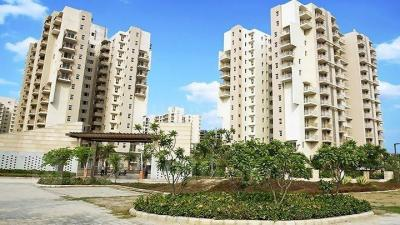 Gallery Cover Image of 2450 Sq.ft 4 BHK Apartment for rent in BPTP Park Serene, Sector 37D for 24000