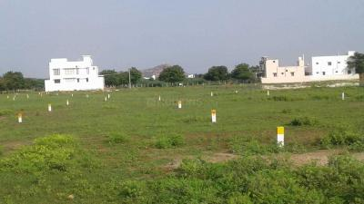 Gallery Cover Image of  Sq.ft Residential Plot for buy in Thiruppalai for 550000