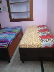 Bedroom Image of PG 3806515 Pitampura in Pitampura