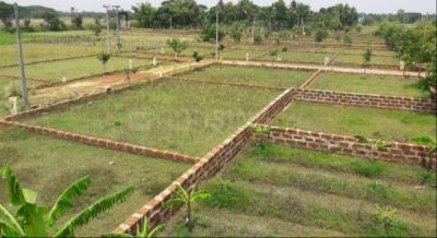 1500 Sq.ft Residential Plot for Sale in Uttara, Bhubaneswar