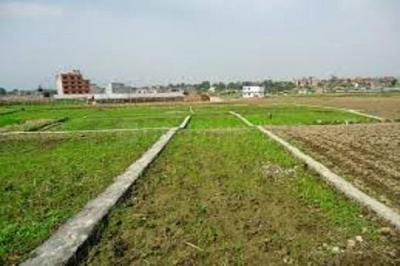 1350 Sq.ft Residential Plot for Sale in JLPL Industrial Area, Mohali