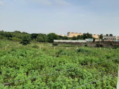 Gallery Cover Image of  Sq.ft Residential Plot for buy in Chakan for 1200000