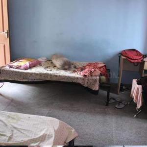 कोरमनगाला में एग्जीक्यूटिव ड्रीम होम पीजी में बेडरूम की तस्वीर