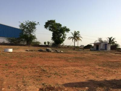 Gallery Cover Image of  Sq.ft Residential Plot for buy in Redhills for 318500