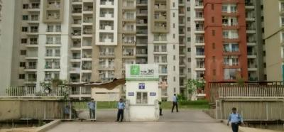 Gallery Cover Image of 1067 Sq.ft 2 BHK Apartment for rent in 3C Lotus Panache, Sector 110 for 13000