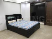 Gallery Cover Image of 1258 Sq.ft 2 BHK Apartment for rent in Amrapali Sapphire, Sector 45 for 24999