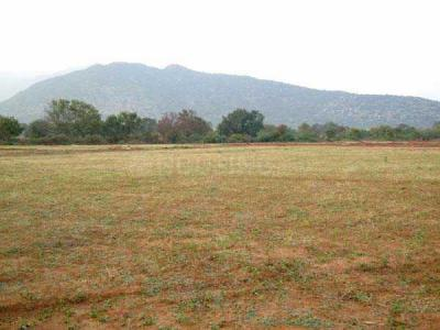 270 Sq.ft Residential Plot for Sale in Sector 42, Faridabad