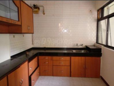 Kitchen Image of Daffodils in Magarpatta City