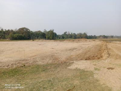 2280 Sq.ft Residential Plot for Sale in Mirza, Guwahati